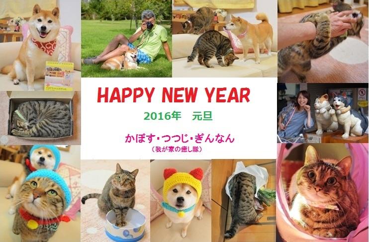 2016年 新年のご挨拶_a0126590_17573751.jpg