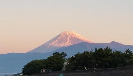 2016年 沼津の未来に夢と希望を!_d0050503_527585.jpg