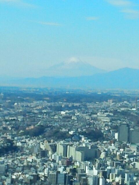 横浜 ランドマークタワーから_c0124528_13033041.jpg