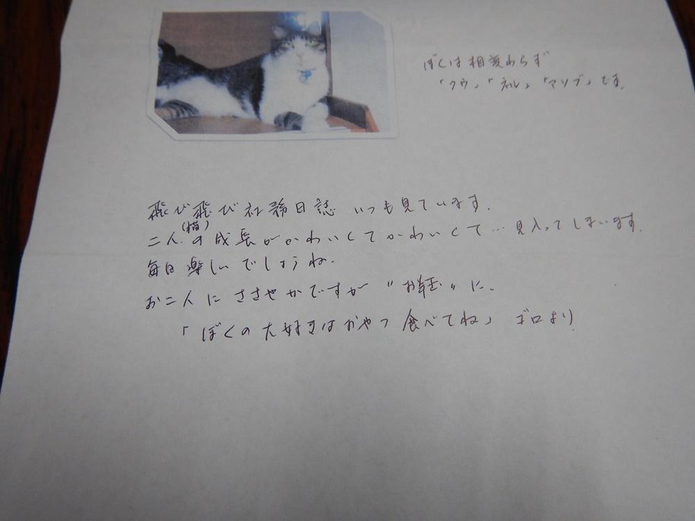 c0111229_1729142.jpg
