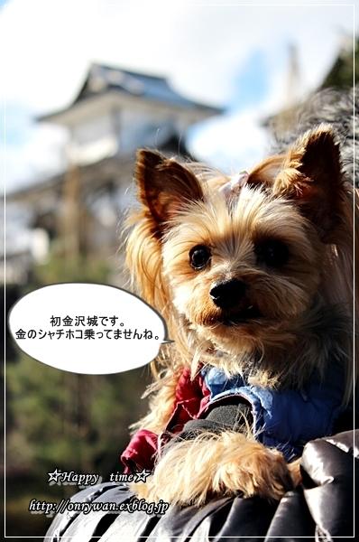 旅行日記①香箱蟹♪_f0348032_22485906.jpg