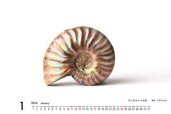 2016年MORiKO★カレンダー(原石編)_d0303974_18213481.jpg