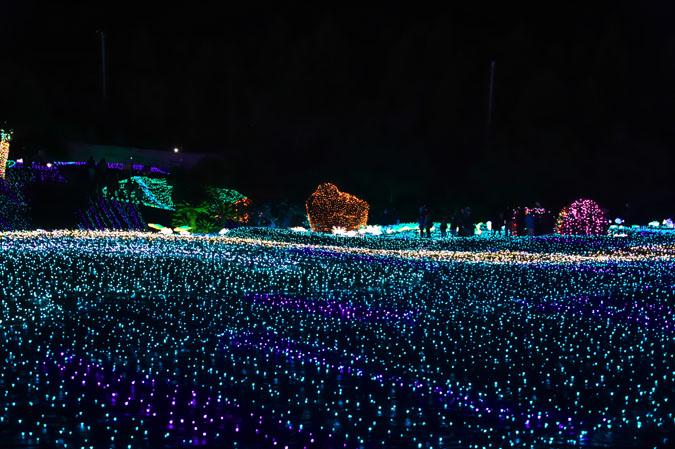 伊豆グランパル公園のイルミネーション2_a0263109_20201541.jpg