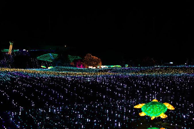 伊豆グランパル公園のイルミネーション2_a0263109_20201987.jpg