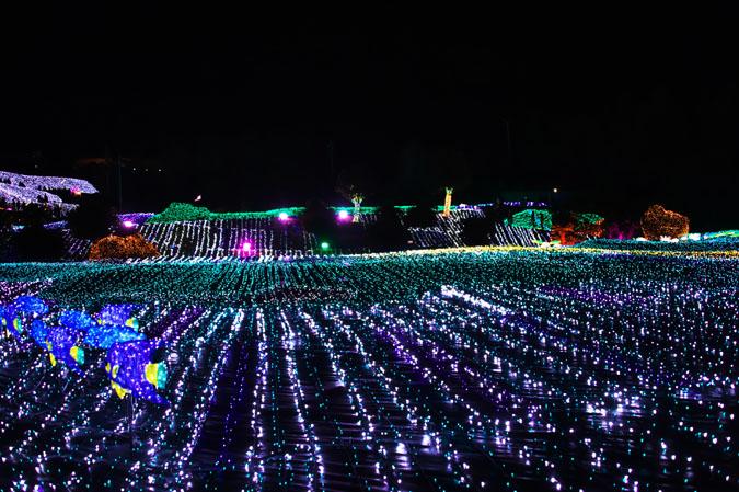 伊豆グランパル公園のイルミネーション2_a0263109_2020758.jpg