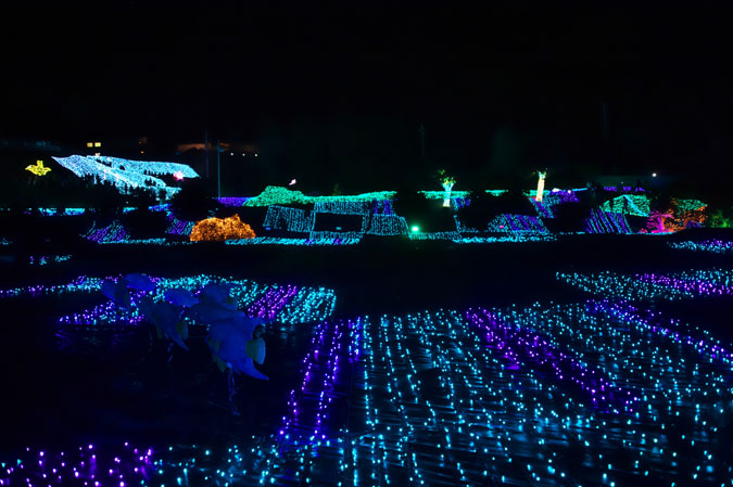 伊豆グランパル公園のイルミネーション2_a0263109_2020998.jpg