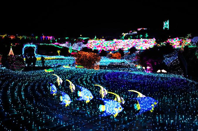 伊豆グランパル公園のイルミネーション2_a0263109_20232825.jpg