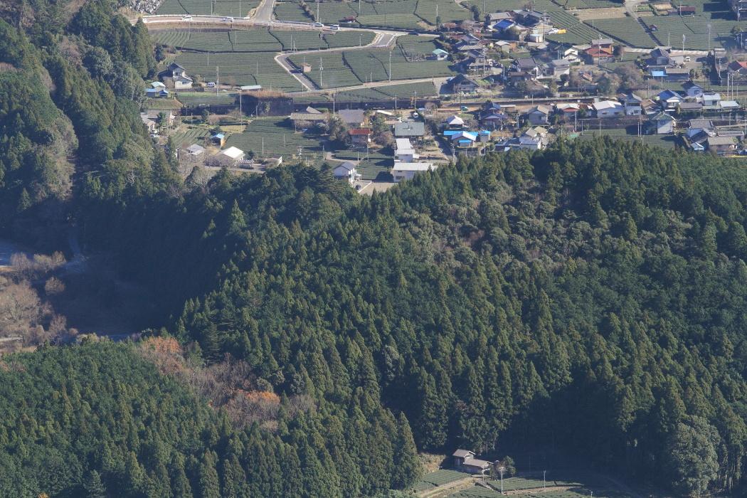 小さなトンネルを抜ける - 2015年冬・大井川 -   _b0190710_22335673.jpg