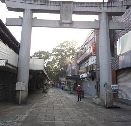 元旦に水前寺成趣園へ_b0228113_1105338.jpg
