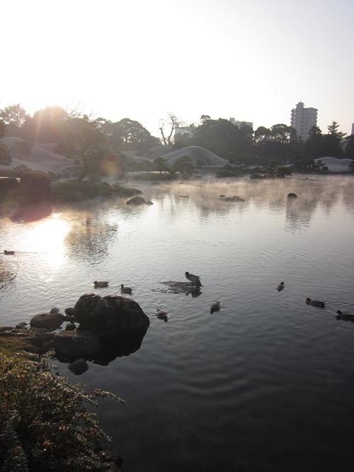 元旦に水前寺成趣園へ_b0228113_11243056.jpg