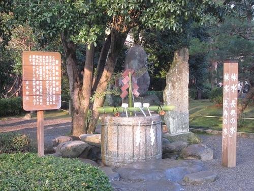 元旦に水前寺成趣園へ_b0228113_11311821.jpg