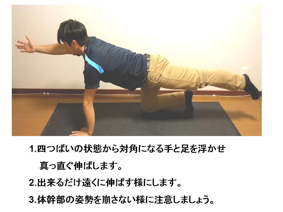 腰痛予防に効果的な体幹トレーニング_c0362789_15501161.jpg