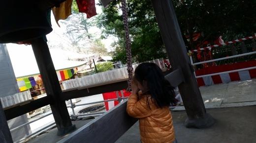 鎮守神社に初詣_f0208315_16351921.jpg