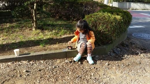 鎮守神社に初詣_f0208315_16383907.jpg