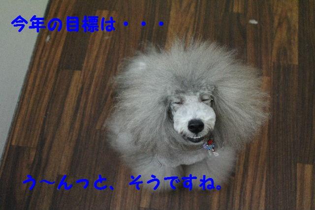 b0130018_187436.jpg