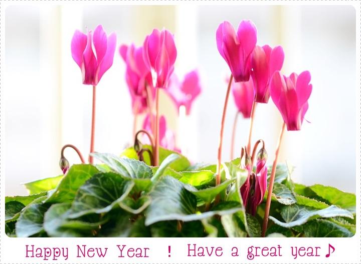 新年のご挨拶_f0012718_13333657.jpg