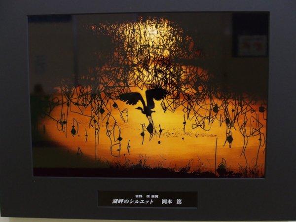 ネイチャ-写真展・カメラ展_b0190540_21354451.jpg