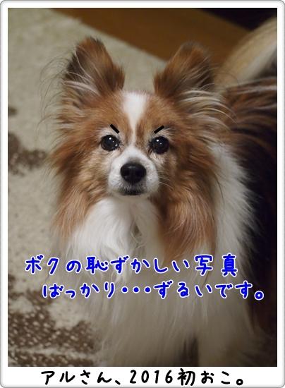 d0013149_00540503.jpg