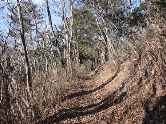 今年最初の山歩きは奥武蔵の伊豆が岳_e0232277_13282787.jpg