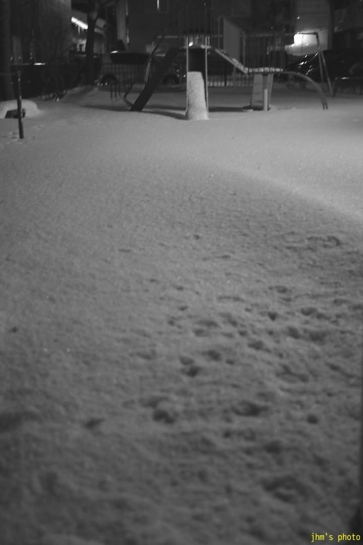 とても静かだった大晦日の函館_a0158797_0421421.jpg