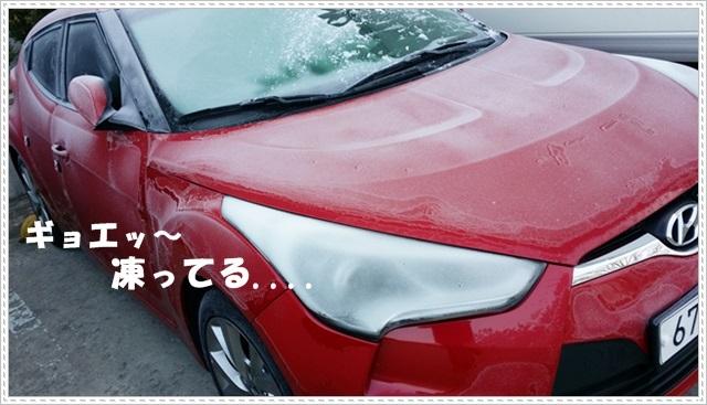♪ 冬、旅行・2 ♪_a0115924_10235242.jpg