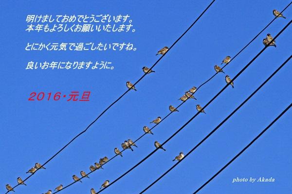 c0104227_12505739.jpg