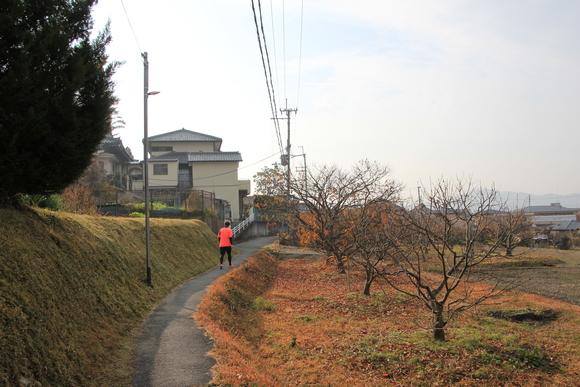 能勢電 平野駅 C#5146×4R (敷地外より撮影)_d0202264_12231899.jpg