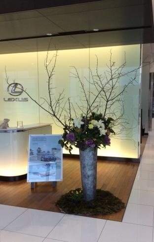 新春初仕事はレクサス宮崎の花装飾_b0137969_21505525.jpg