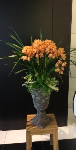 新春初仕事はレクサス宮崎の花装飾_b0137969_21522784.jpg