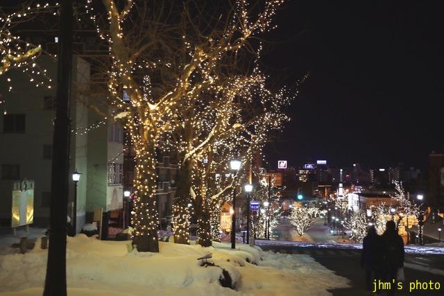 函館と札幌のイルミネーション_a0158797_2382042.jpg