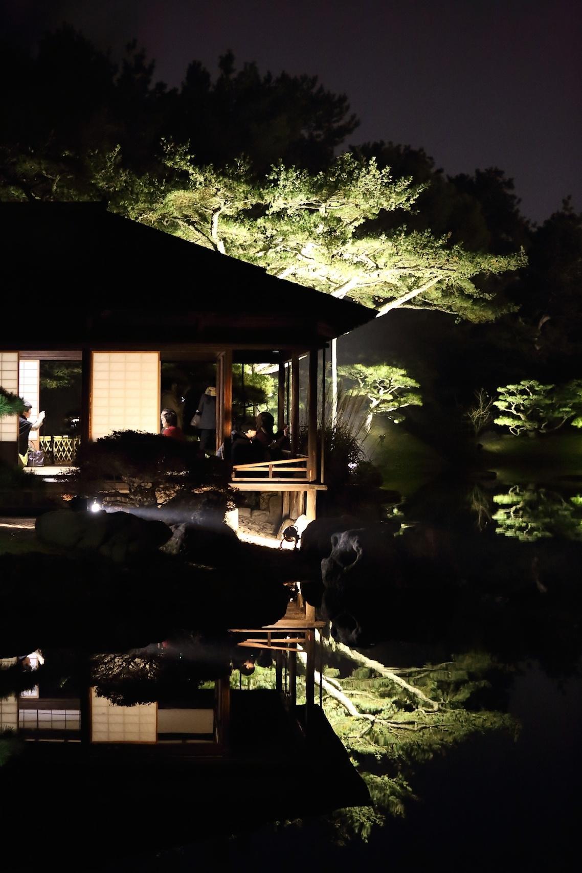 栗林公園 秋のライトアップ 2015 _d0081605_2544272.jpg