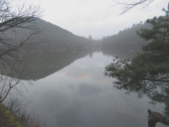 宝が池 霧の朝_e0048413_17532783.jpg