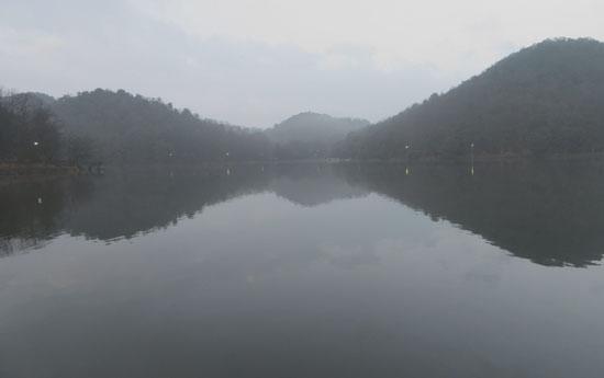 宝が池 霧の朝_e0048413_17533936.jpg