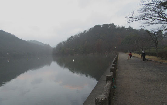 宝が池 霧の朝_e0048413_17535375.jpg