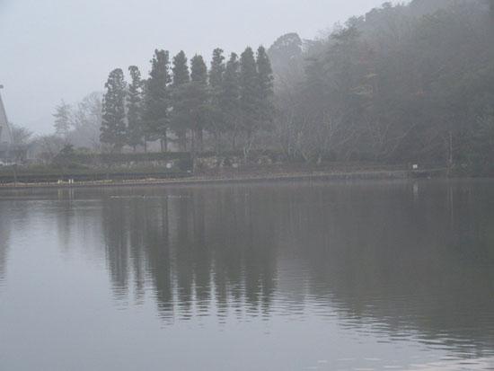 宝が池 霧の朝_e0048413_17542670.jpg
