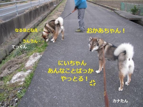 f0143123_09110329.jpg