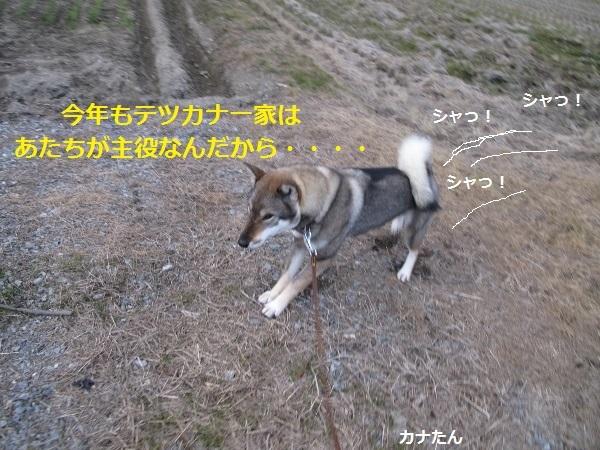 f0143123_09115168.jpg