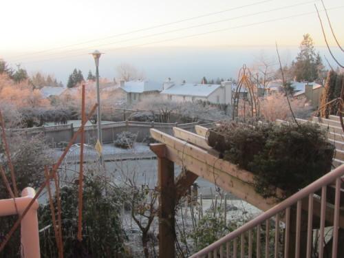 霧氷_a0173527_07200661.jpg