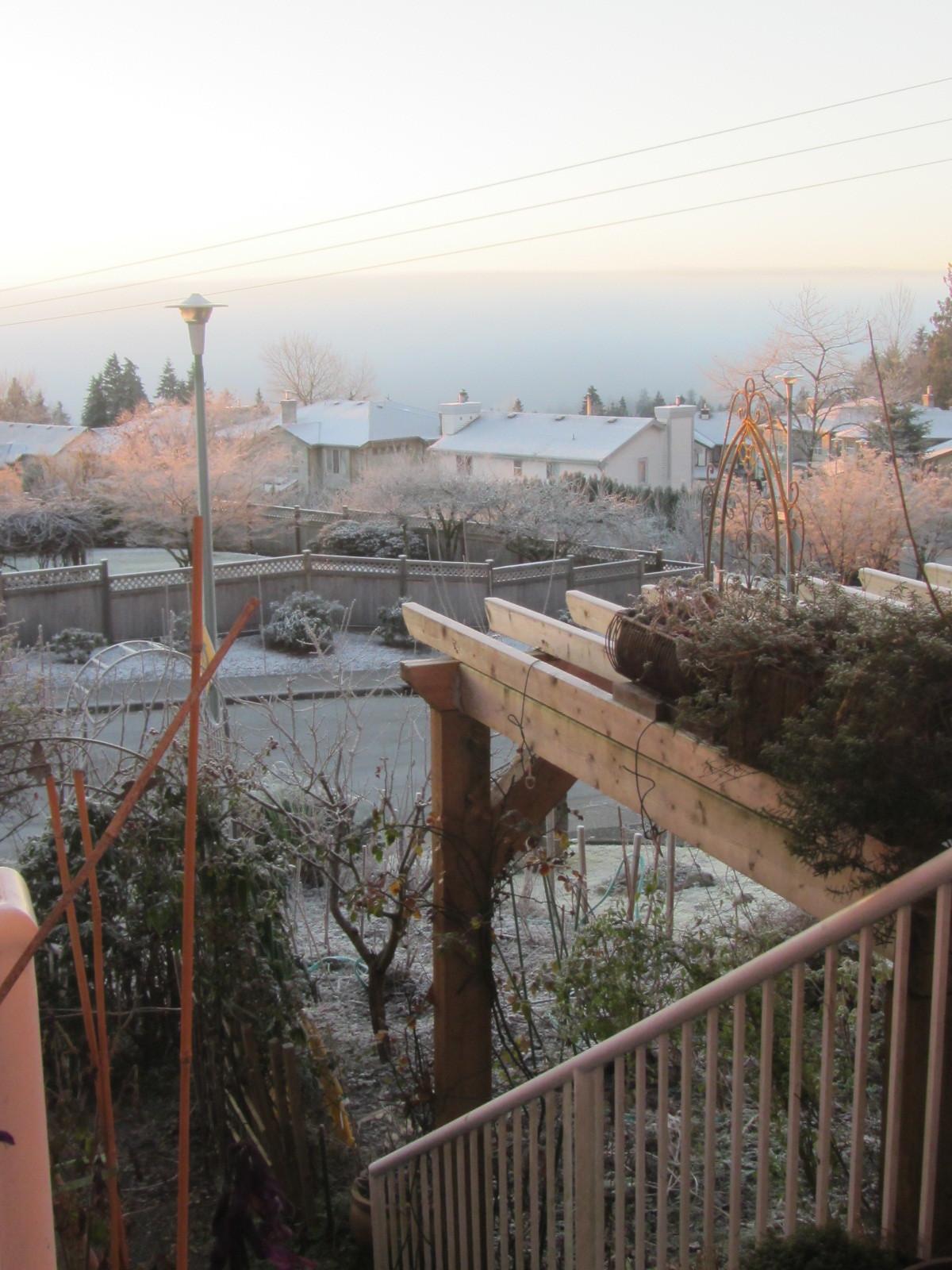 霧氷_a0173527_07204414.jpg