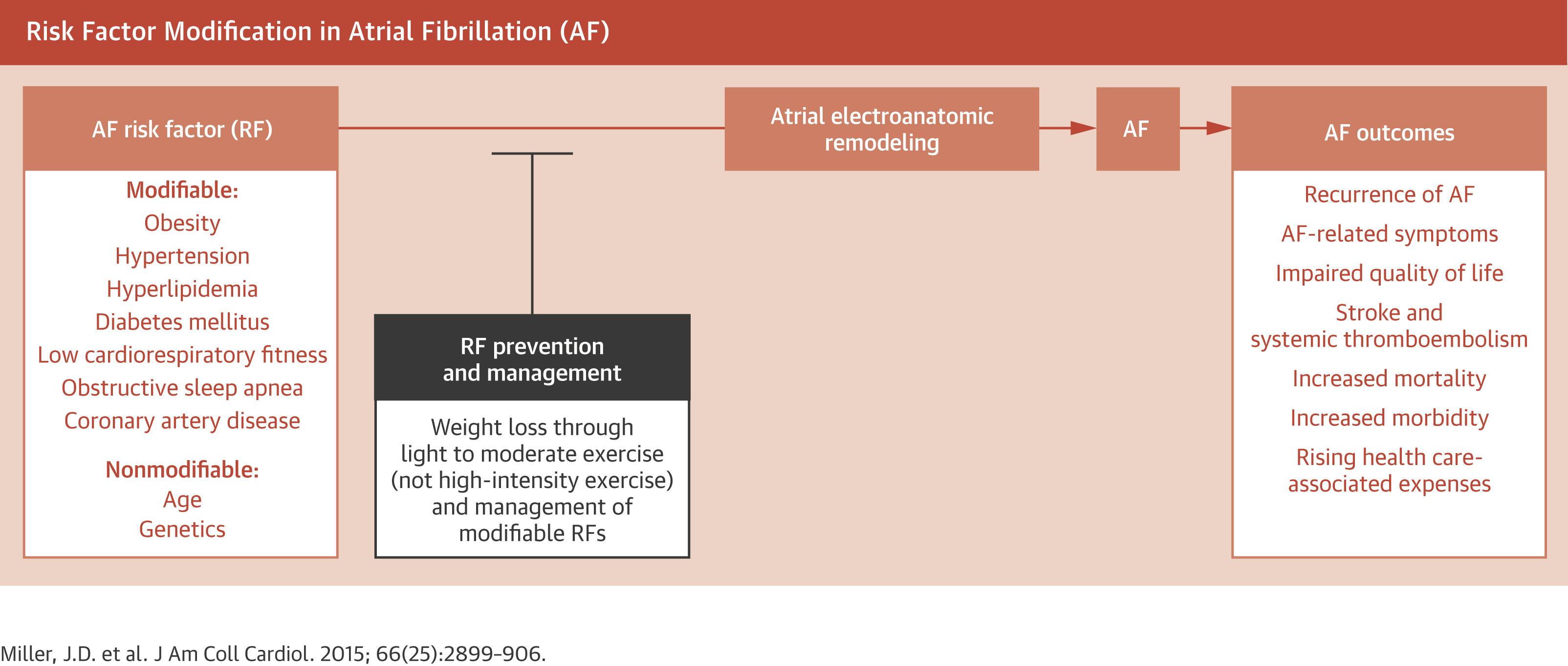 心房細動診療の4本目の柱:包括的心リスク因子管理:JACC誌_a0119856_22112444.jpg