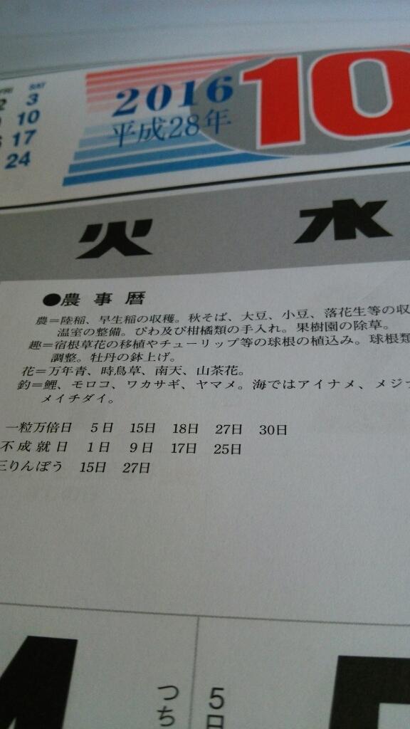 d0225156_20033801.jpg