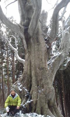 ブナの巨木に挨拶_e0036983_17141439.jpg