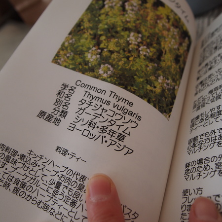 ハーブ辞典の訂正_a0292194_15152496.jpg