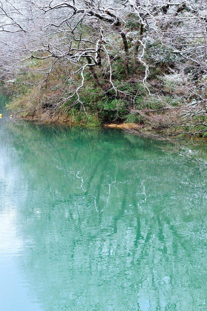 雪のない森林公園_c0220824_18540622.jpg