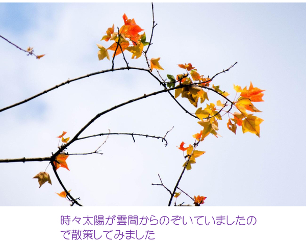 e0304485_19223130.jpg