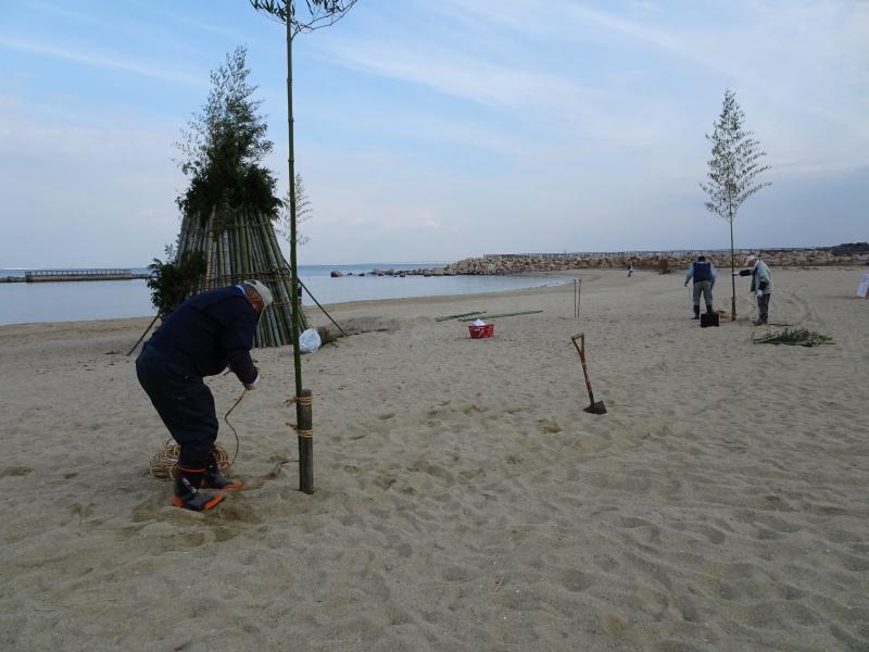 「とんど」の詰め作業 in せんなん里海公園内うみべの森_c0108460_15555061.jpg