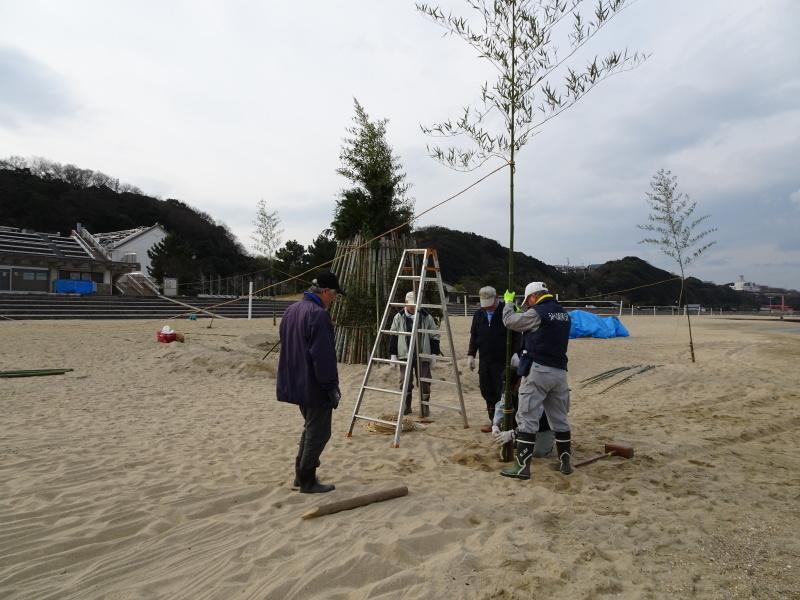 「とんど」の詰め作業 in せんなん里海公園内うみべの森_c0108460_15555320.jpg