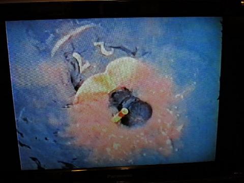 『二人の海』の江ノ島、ぶら歩き。_b0141773_13294260.jpg