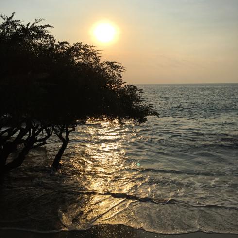 おやすみ日記 - 3 - タイ サメット島_c0168222_12454729.jpg