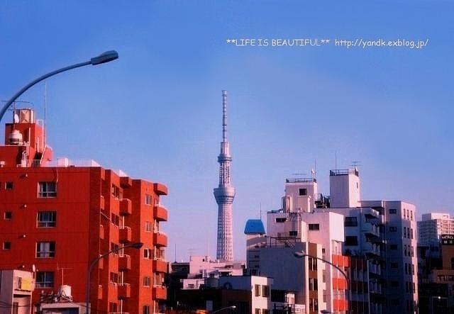 下町コロスケ_d0083623_2358090.jpg